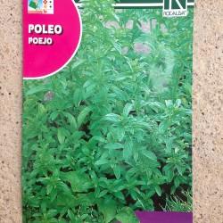 Semillas Poleo-Mentha pulegium