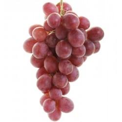 """Parra uva mesa""""Red Globe""""..."""