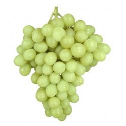 Parra uva de mesa...