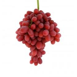 Parra uva de mesa CRIMSON...