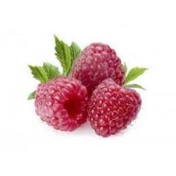 Rubus ideaus (Frambuesa)...
