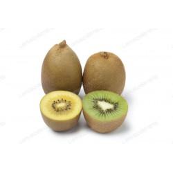 Actinida deliciosa - Kiwi...