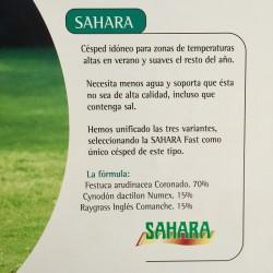 Semilla de césped SAHARA