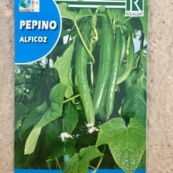 "Semillas pepino ""ALFICOZ"""