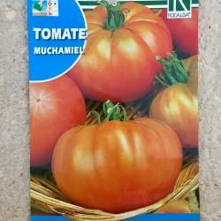 "Semillas tomate ""MUCHAMIEL"""