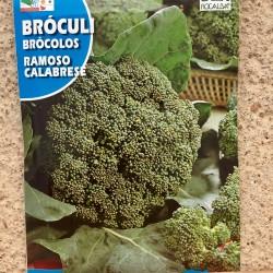 "Semillas Broculi ""ROMOSO..."