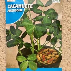 Semillas cacahuete
