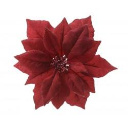 629332 Poinsettia con clip...