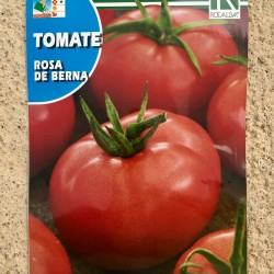 "Semillas tomate ""ROSA DE..."