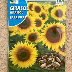 Semillas girasol para pipas