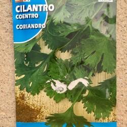 Semillas cilantro
